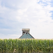 corn_and_old_building