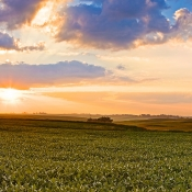 iowa_farmland_pano