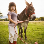 little_girl_and_donkey